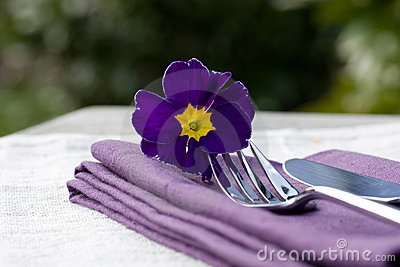Place setting and purple napkin
