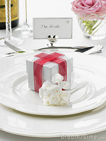 Free Place Settings For Bride And Groom Stock Photo - 8756110