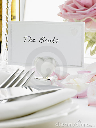 Free Place Settings For Bride And Groom Stock Images - 8756114