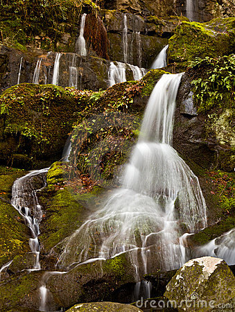 Place of a Thousand Drips in Smokies