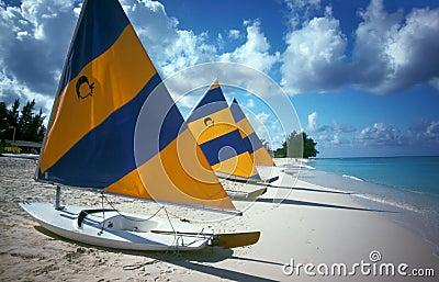 Plage d île de caïman de bateaux à voiles