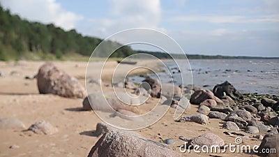 Plage de mer baltique avec des pierres banque de vidéos