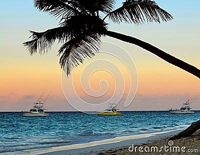 Plage tropicale au coucher du soleil