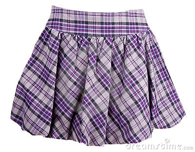Plaid Feminine Skirt Stock Image - Image: 16809071