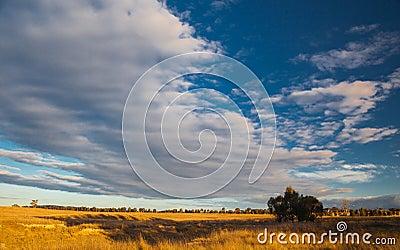 Plains near Canberra, Australia Capital Territory
