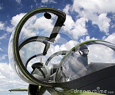 Plane canopy