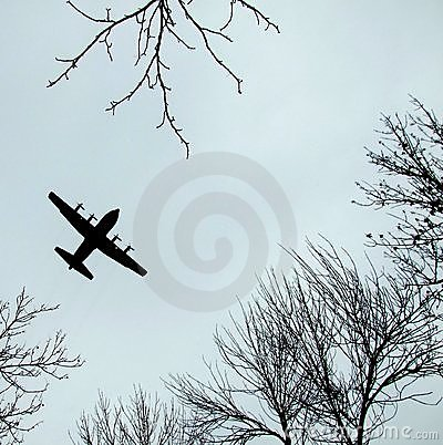 Plane flying above the trees