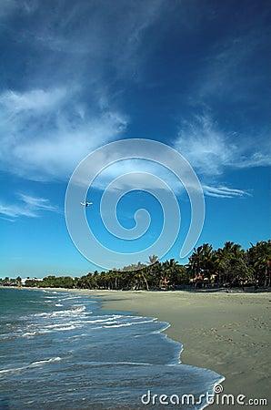 A plane over a beach
