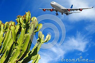 Plane and tropical destination