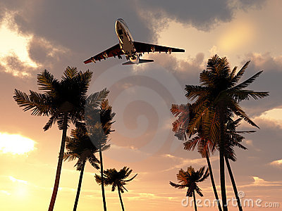 Plane In Tropical Sky