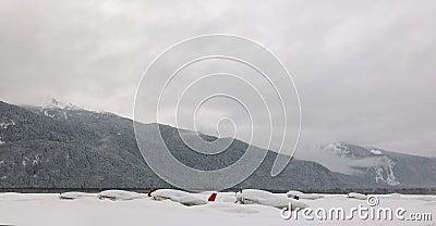Planes under snow.