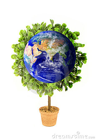 Planet Earth Eco Plant