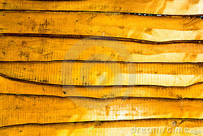 Plank backdrop