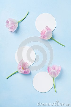Free Planning Or Invitation Concept With Fresh Pink Tulip Flowers On Blue Pastel Background. Top View. Flat Lay. Royalty Free Stock Photos - 109453768
