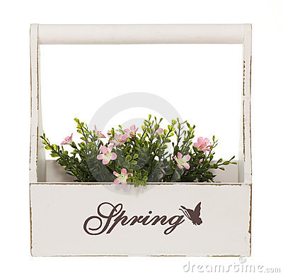 Plant Box with pink Flowers