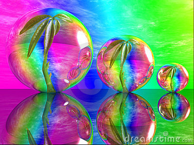 Plant And Bubble Stock Photo - Image: 23377970