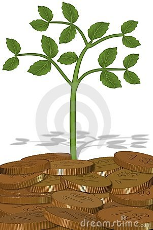 Plant and coins