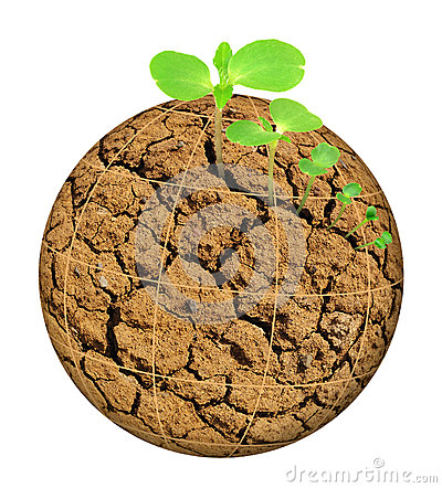 Plant growing out of parched planet, evolution con