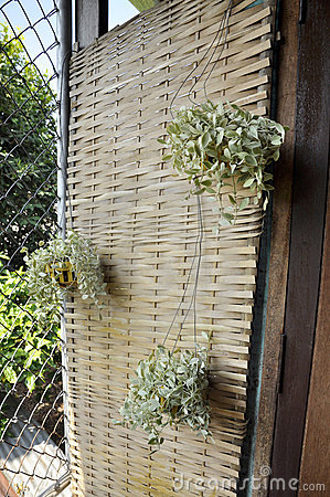 Plant Hang Decoration Pattern Weave