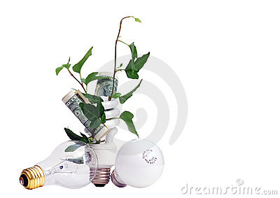 Plant and Money in Efficient Light Bulb