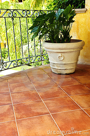 Free Plant On Tiled Mexican Veranda Royalty Free Stock Photo - 13254385