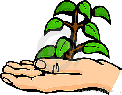 Plant in palm of hand