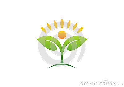 Plant,people,natural,logo,health,sun,leaf,botany,ecology,symbol and icon Vector Illustration