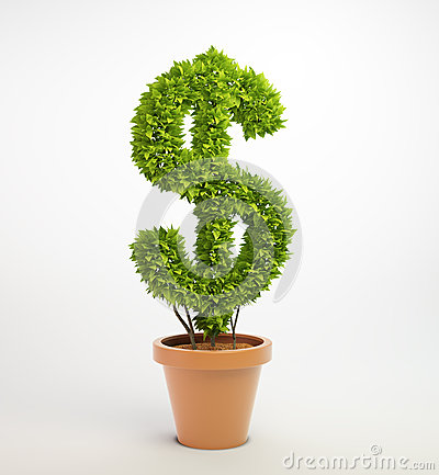 Plant in a pot shaped like a dollar