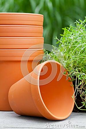 Free Plant Pots Stock Photos - 33486923