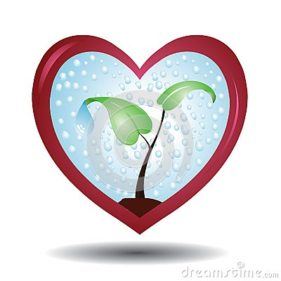 Plant in a protective love shaped glass