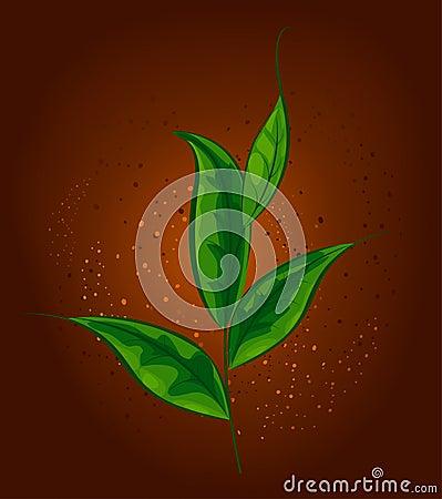 Plant tea