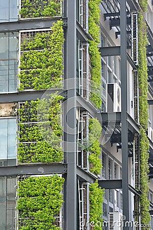 Planta verde e edifício moderno