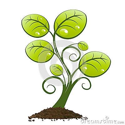 Planta verde que crece de suelo