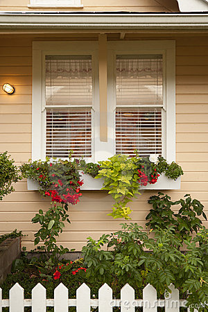 Free Planter Boxes With Flowers Under Window Royalty Free Stock Image - 19448166
