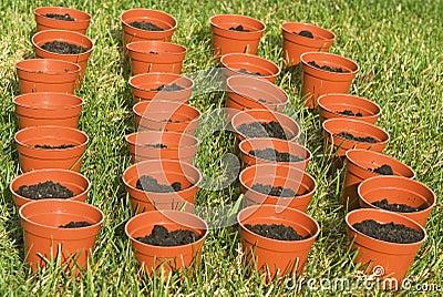 Planters in the garden