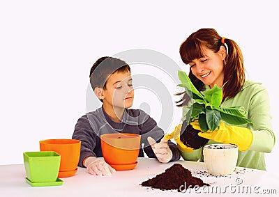 Planting a flower