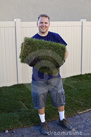 Planting New Sod Grass (Yard work)