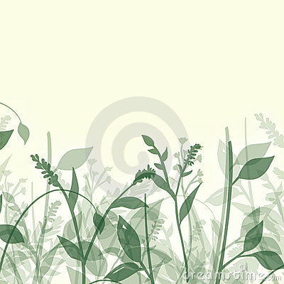 Plants Abstract