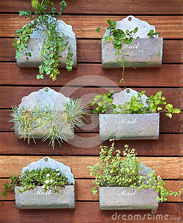 Free Plants In A Mail Box Stock Photo - 24631020