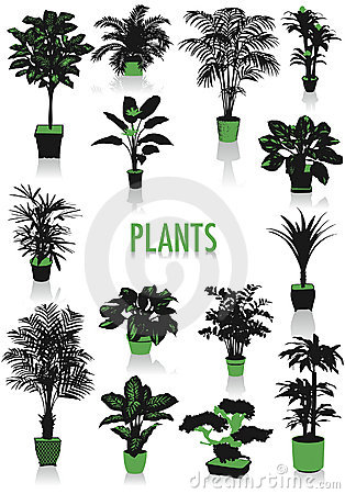 Plants silhouettes Stock Photo
