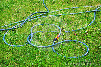Plastic hose on green grass