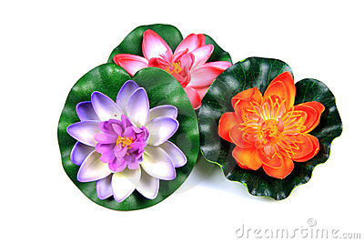 Plastic lotus flowers