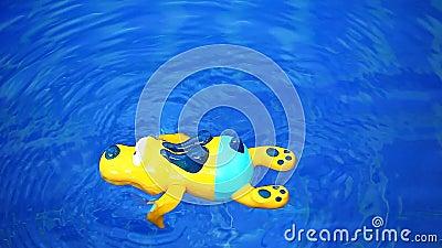 Plastikhd Gesamtlänge des Swimmingpools gelber Hunde stock footage