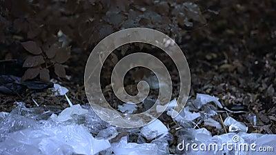 Plastikowa torba spadająca na wysypisko śmieci w lesie, globalny problem ekologiczny zdjęcie wideo