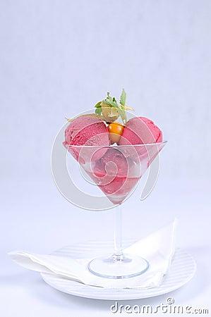 Plate of fine dessert - raspberry sorbet