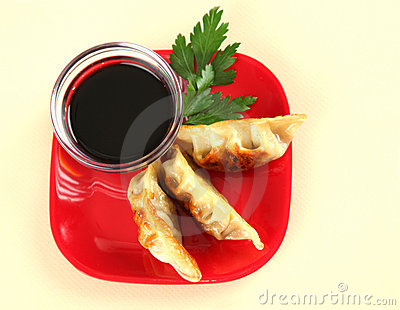 Plate of Juicy Chinese Fried Potstickers