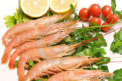 Plate With Prawns