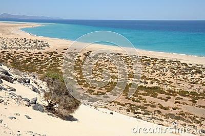 Playa de Sotavento, Fuerteventura, Spain