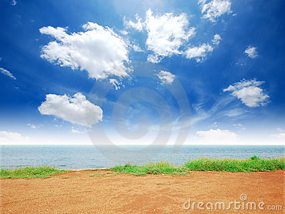 Playa del sol del arena de mar de la hierba verde