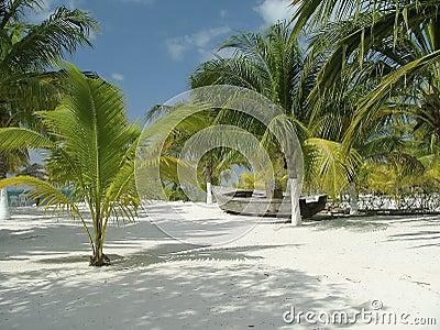 Playa Gaviota